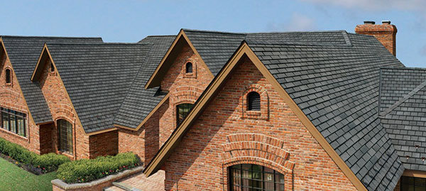 Shingle Roof Repair Cape Coral